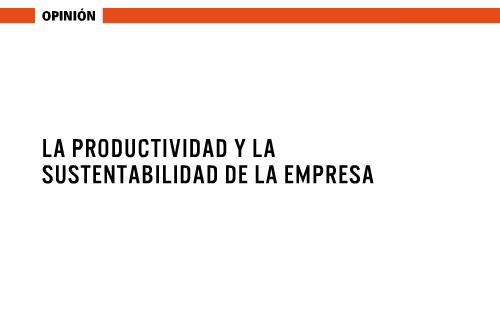 """Opinión """"Productividad y sustentabilidad de la empresa"""""""