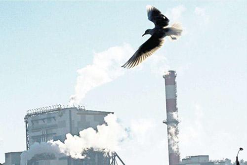 En noviembre empresas presentarán propuestas para plan de descontaminación