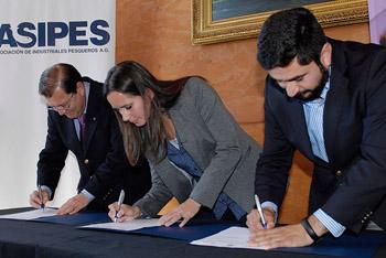 ASIPES lanza proyecto para convertir a Biobío en la capital gastronómica marina de Chile